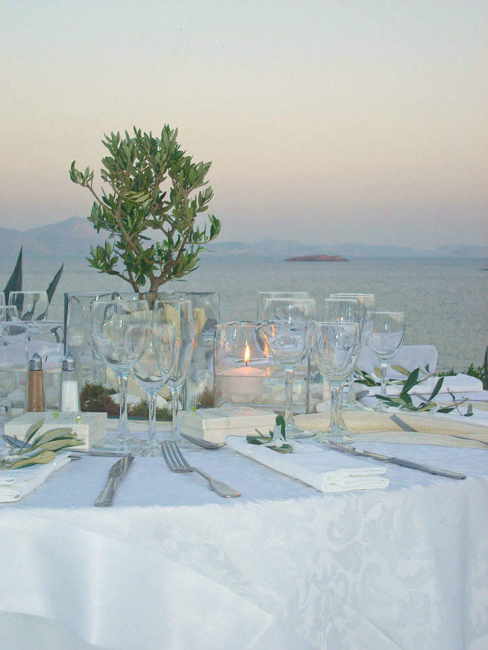 Wedding Reception Olive Tree Island
