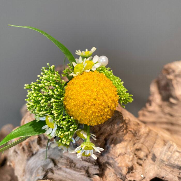 Groom Boutonnieres Craspentia Trachelium