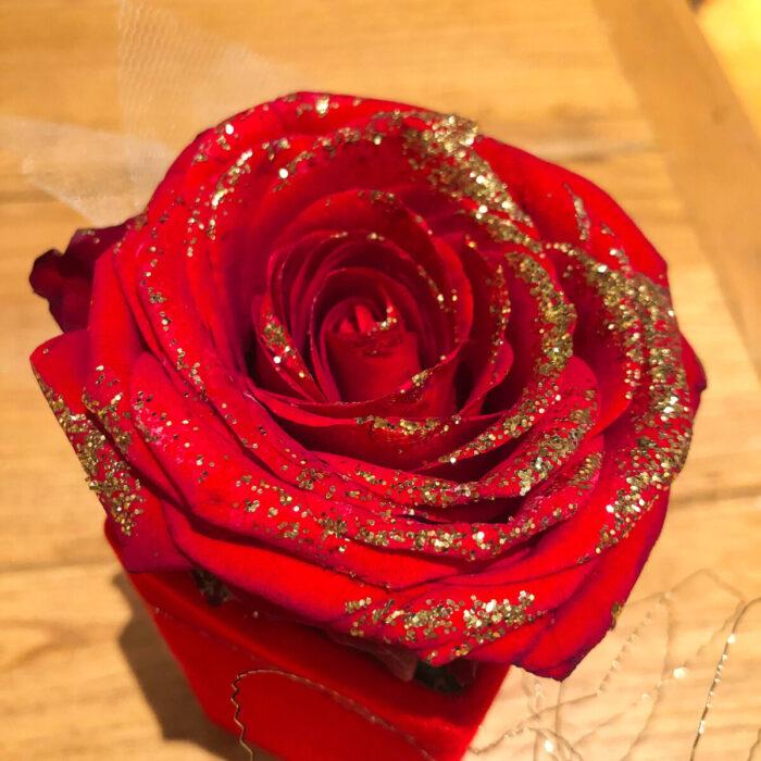 Κόκκινο Τριαντάφυλλο Γκλίτερ Κουτί Βελούδινο