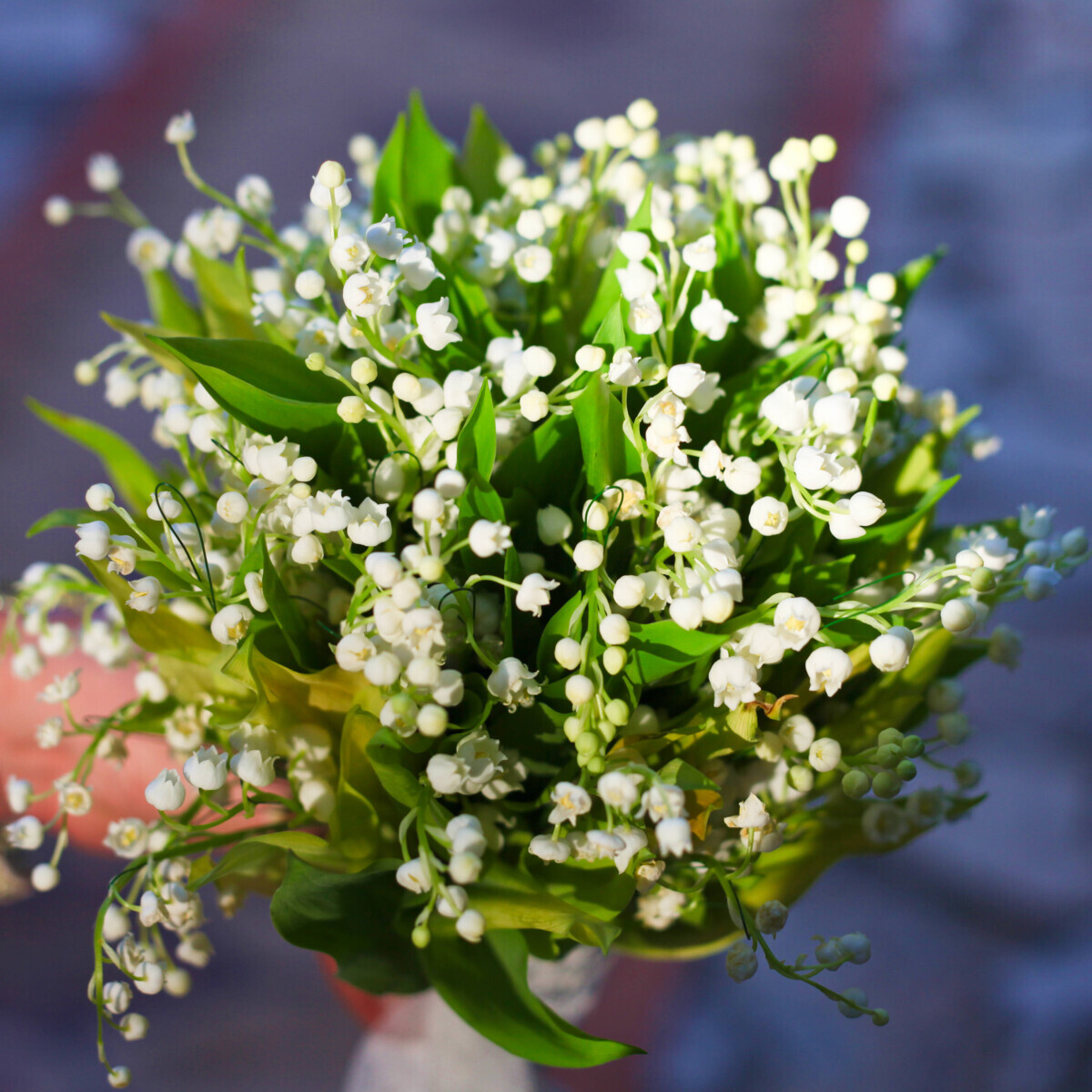Bridal Bouquet Lily Valley