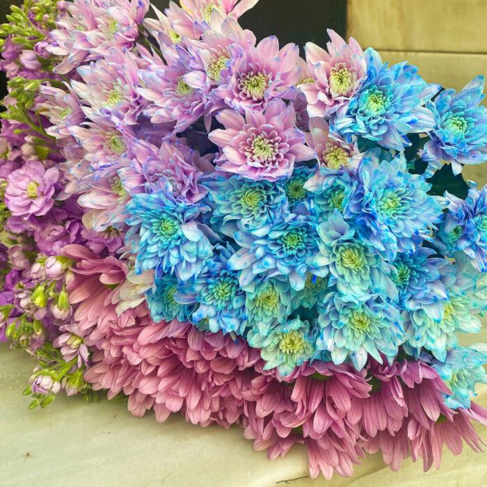 Bouquet Light Blue Lilac Chrysanthemums