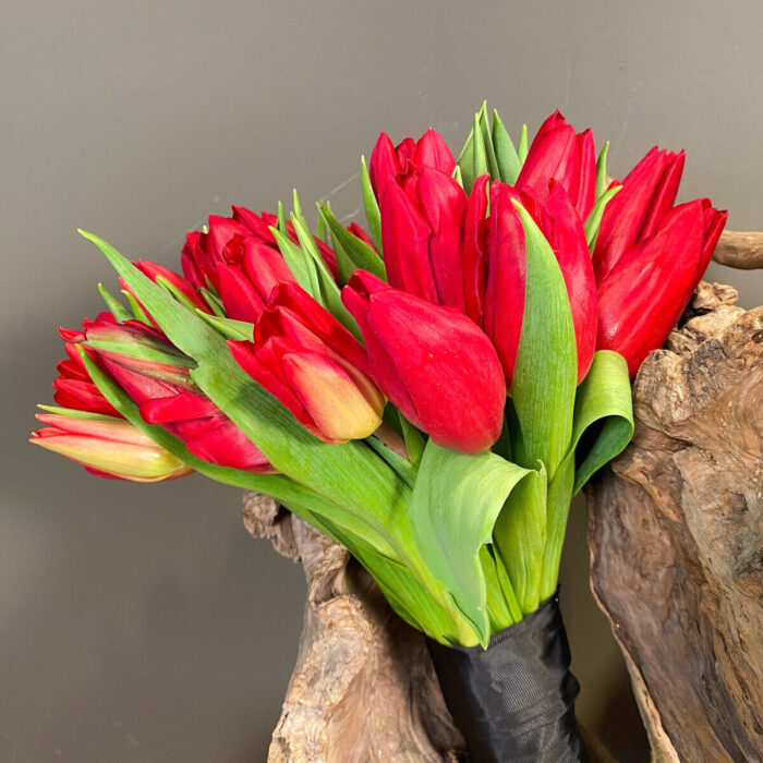 Bridal Wedding Bouquet Tulips Red
