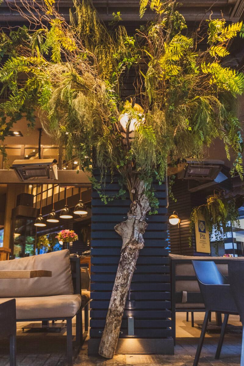 Decoration Artificial Greenery Pit Caffe Kolonaki